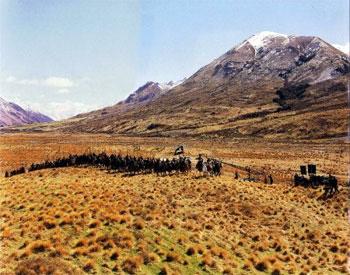(image: http://wiki.lindefirion.net/images/Calenardhon.jpg)